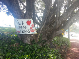 We heart these trees banner