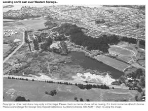 historic photo of GNR Pohutukawas
