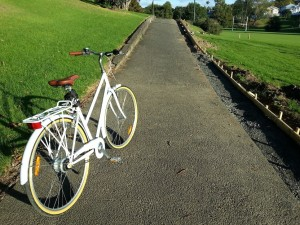 Path widening in Grey Lynn park for the new Greenways route