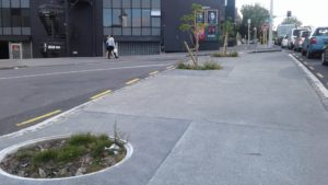 Williamson Ave new tree pits