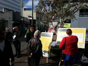 Newmarket Laneways plan open day Obsorne St