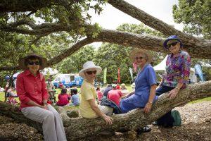 Parnell Festival of roses